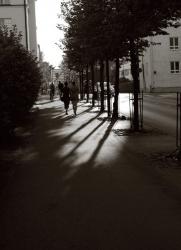 city11.jpg