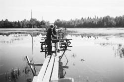 Ku-)A14-31_Kytänsalmen sillalla 1950 luvulla.jpg